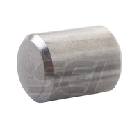 Alignment Dowel Pin Gen 2